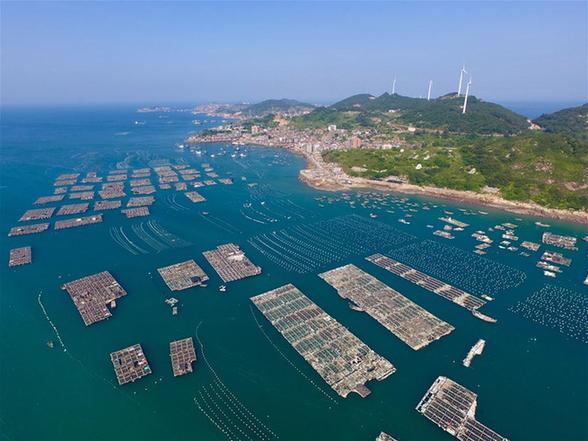 福建:清理海漂垃圾 守护蔚蓝海洋