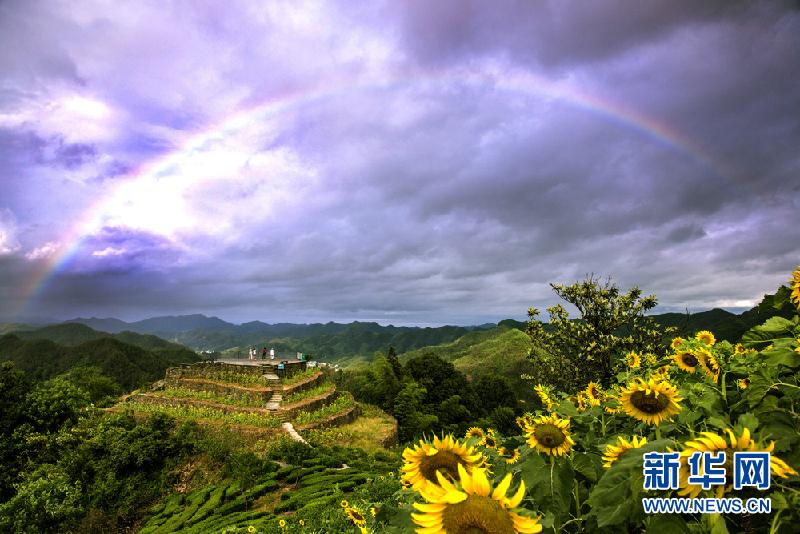 2017年8月1日,安徽歙县石潭风景区雨后出现绚丽的彩虹,分外夺目,蔚为
