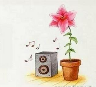 奇葩冷门小知识|音乐伴奏下植物长更快