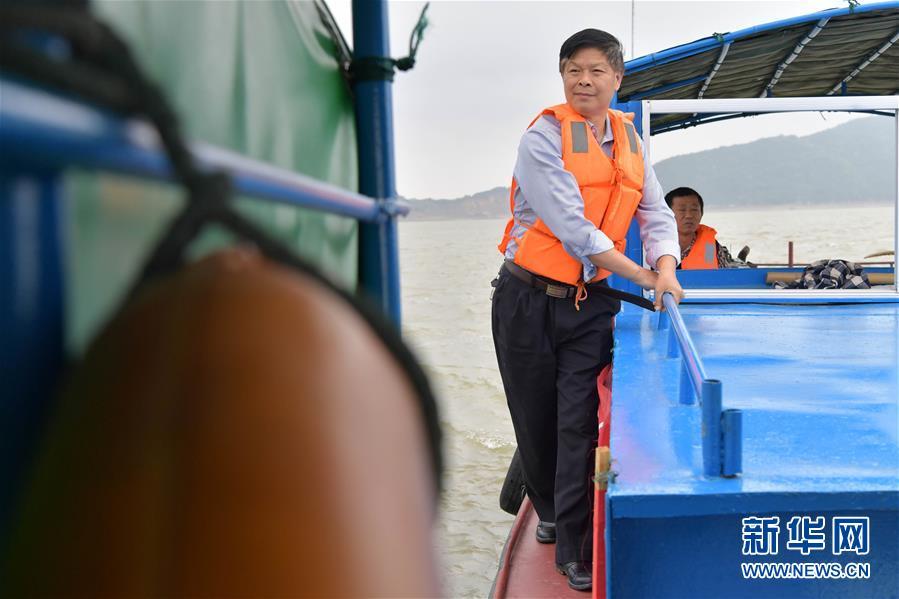 """(圖片故事)(1)鄱陽湖上的江豚""""保鏢"""""""
