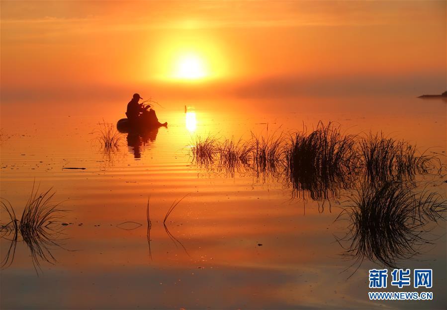(新華全媒頭條·圖文互動)(2)唱響新時代的烏蘇裏船歌——通往振興之路的黑龍江邊境特色鄉村建設紀實