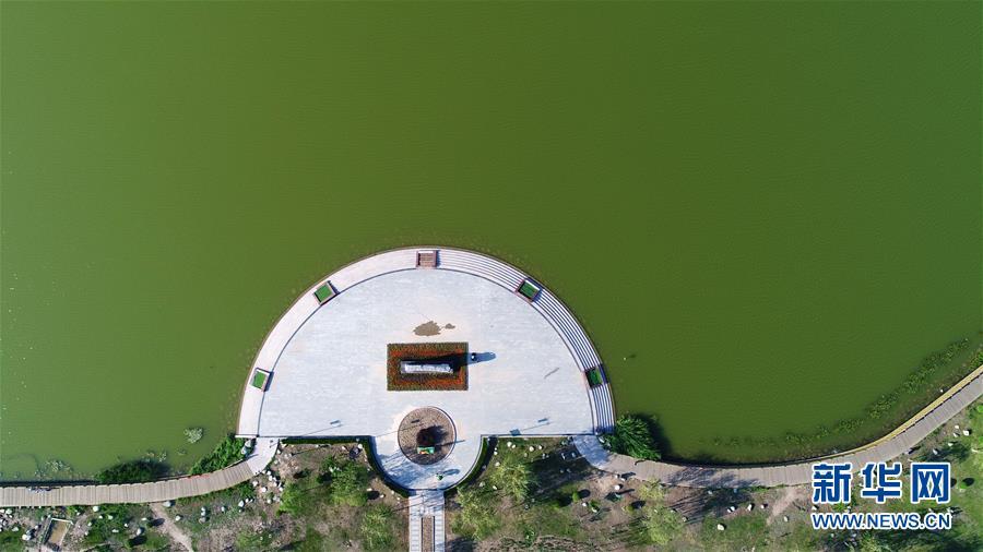 """(環境)(1)塞上湖城 重構""""城市之肺"""""""