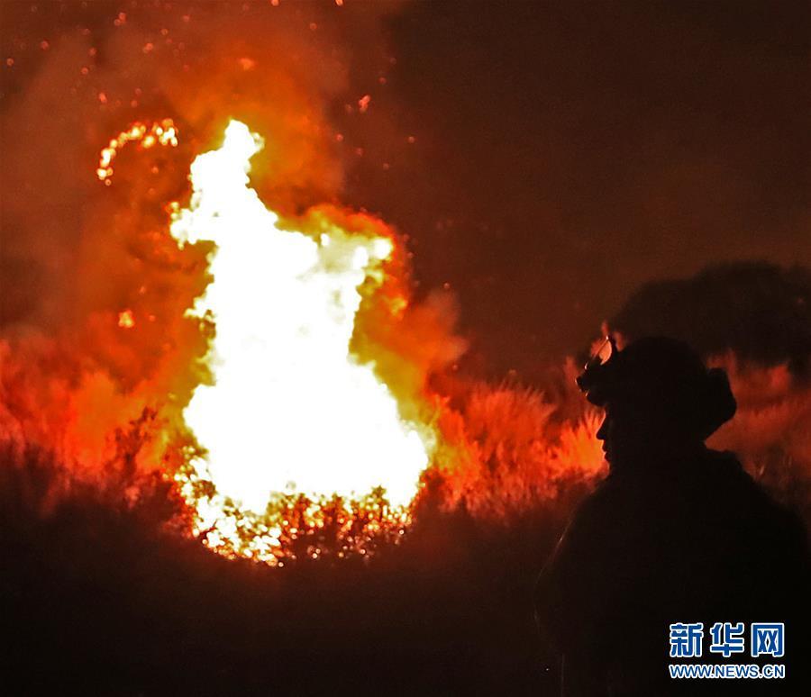 (國際)(5)美國加州山火肆虐