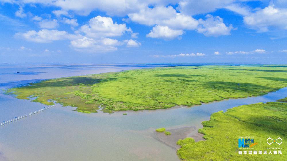 沙州坝风景画画图片