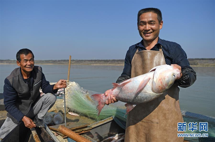 (社會)(1)鄱陽湖:人歡魚躍冬捕忙