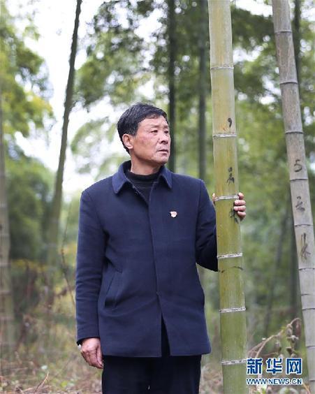 """(改革先鋒風採·圖文互動)(1)鮑新民:""""綠水青山就是金山銀山""""理念的踐行者"""