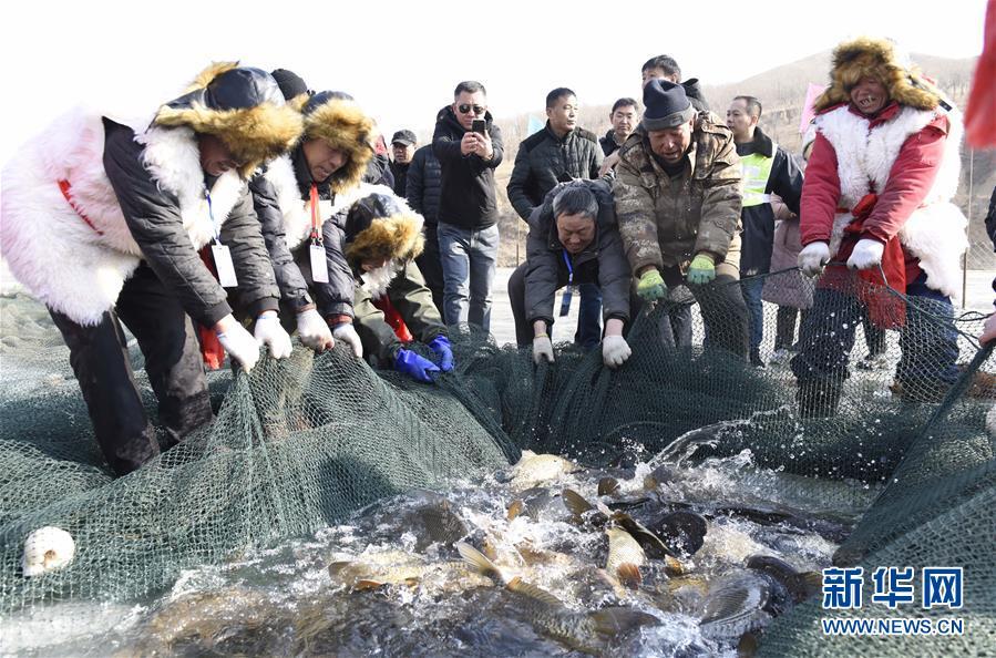 #(社會)(1)查幹湖冬捕技藝在呼和浩特上演