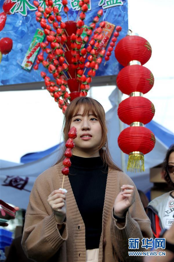 (社會)(1)紅紅火火的香港年宵花市