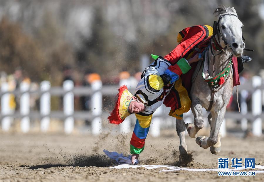 (新春走基層)(3)西藏:賽馬慶新年