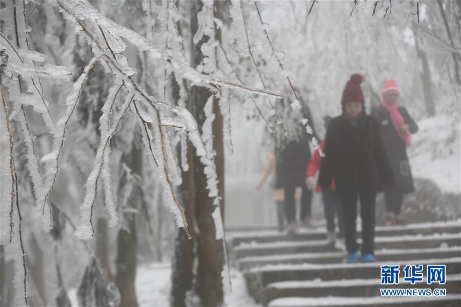 #(環境)(4)張家界迎降雪 景區銀裝素裹