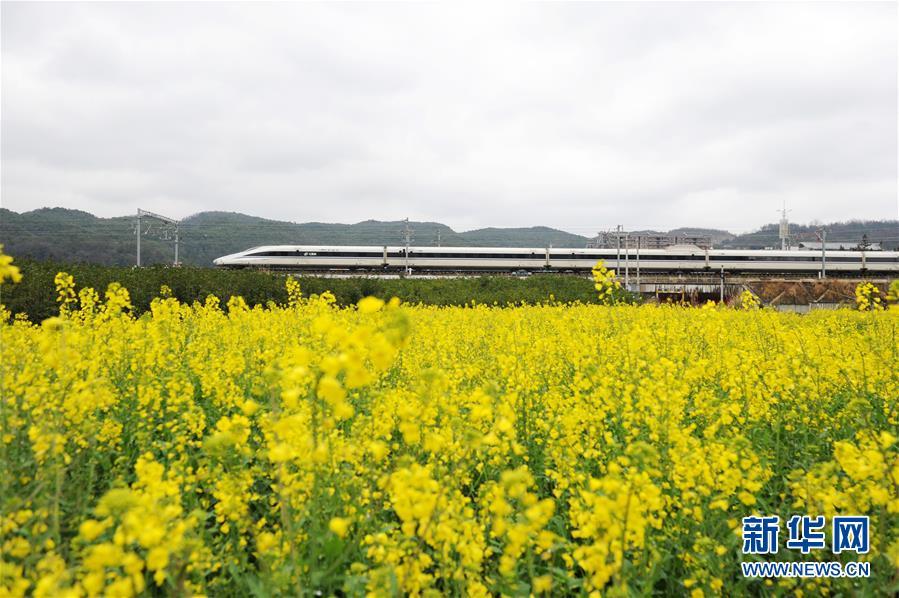 (社會)(2)開往春天的列車