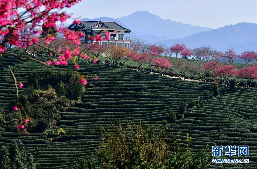 (迎接兩會)(1)鄉村振興好風景