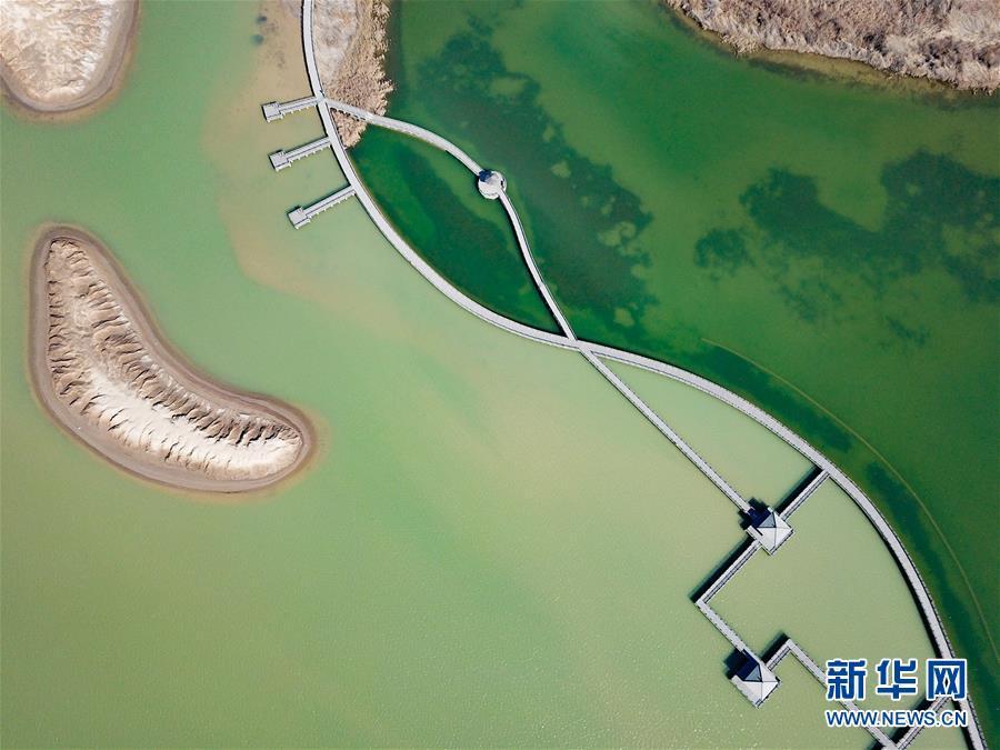 (環境)(3)鳥瞰黃河口濕地風光