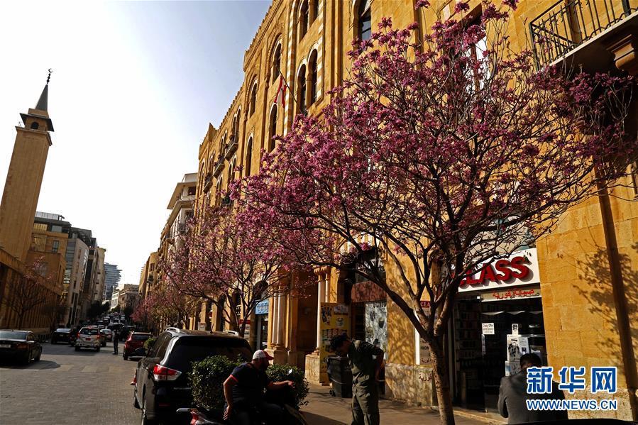 (國際)(1)春到貝魯特