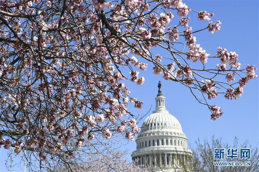 (國際)(2)美國會眾議院未能推翻總統否決令