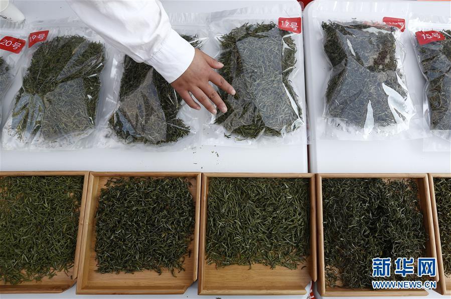 #(社會)(1)安徽黃山:徽州民間鬥茶香