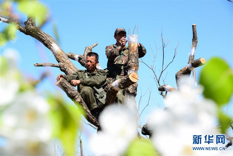 #(社會)(5)特色農業 別樣春管