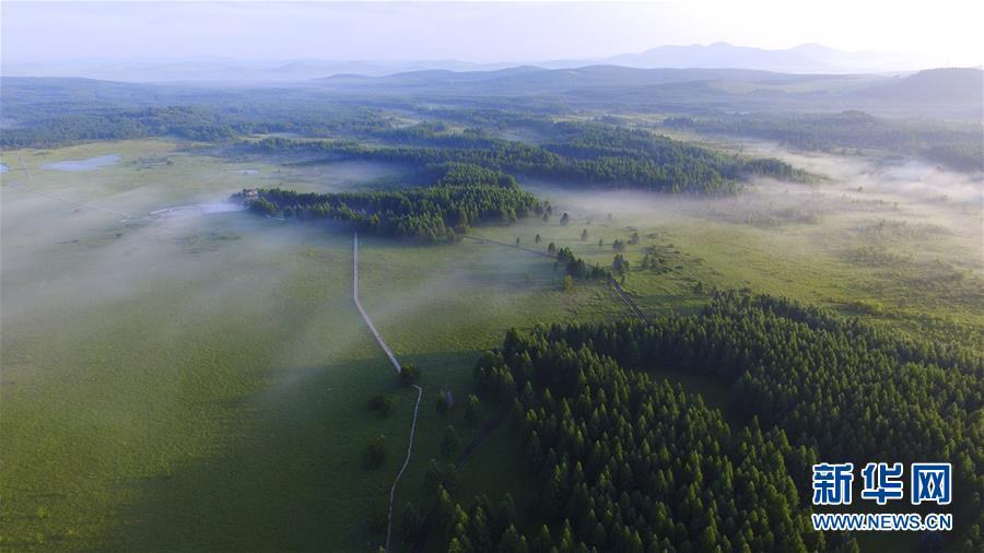 (權威訪談·聚焦中國經濟亮點·圖文互動)(3)防治土地荒漠化 推動綠色發展——專訪國家林業和草原局副局長劉東生