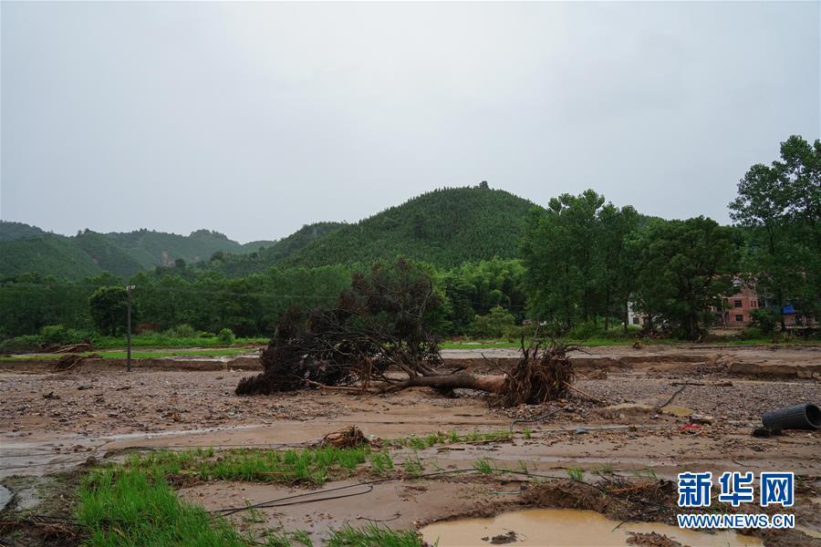 (圖文互動)(3)強降雨導致多地出現內澇 江西、貴州啟動防汛Ⅳ級應急響應