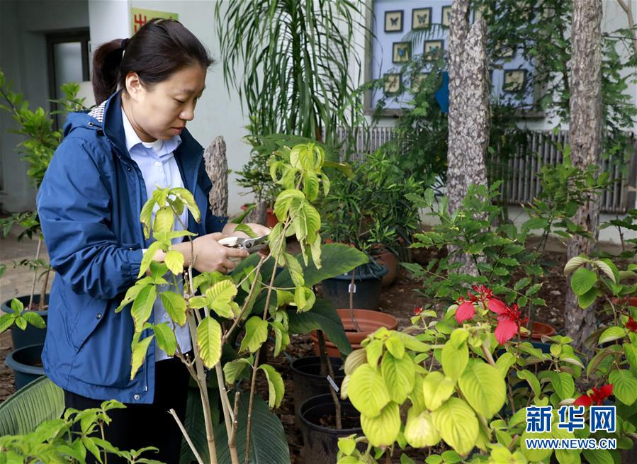 (圖文互動)(2)北京世園會200余個特有珍稀植物品種搬入北京植物園