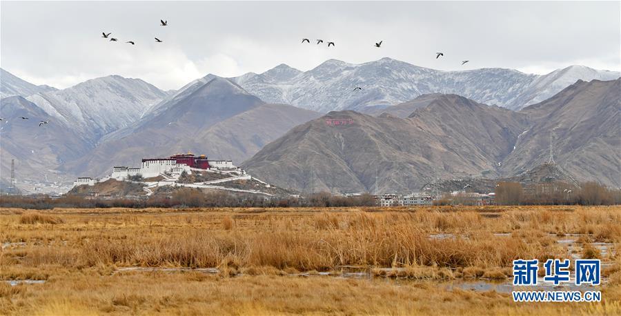 (美麗中國)(1)初春拉魯濕地