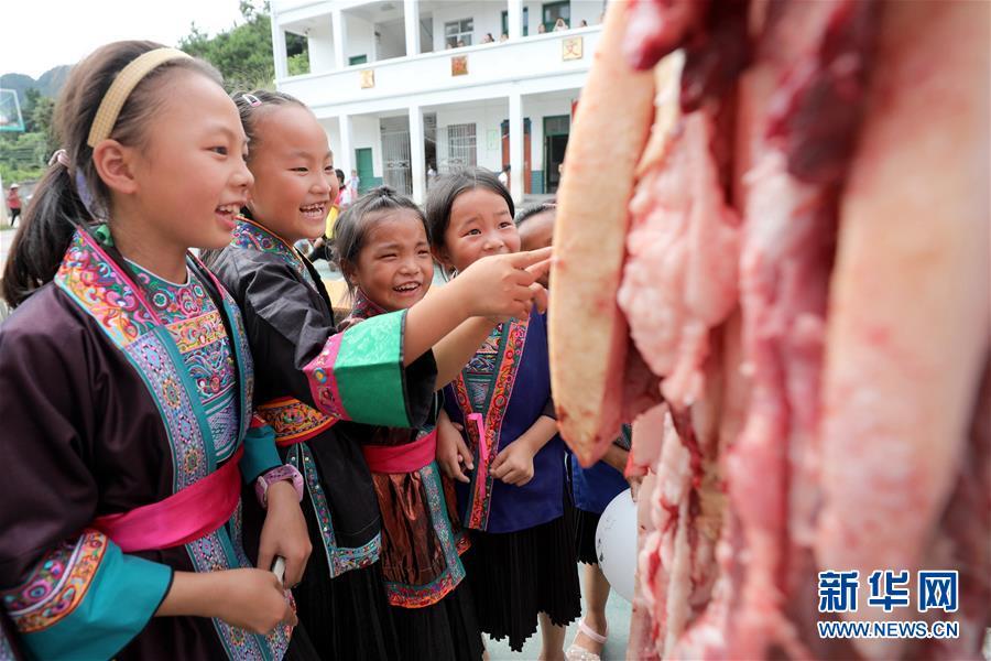 (熱點鮮報·圖文互動)(1)看!侗鄉小學又發活魚、豬肉了