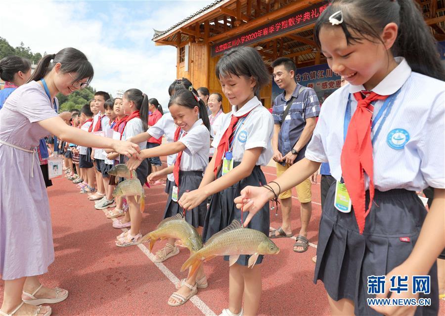 (熱點鮮報·圖文互動)(3)看!侗鄉小學又發活魚、豬肉了