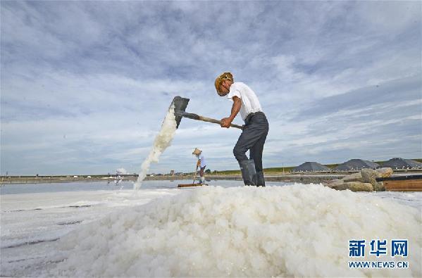 #(社會)(2)福建泉州:防禦臺風 搶收原鹽