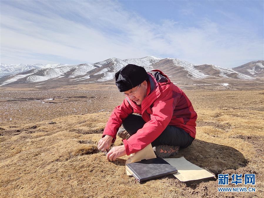 (新時代擔當作為典型·圖文互動)(2)草地生態專家趙新全:情深不舍三江源