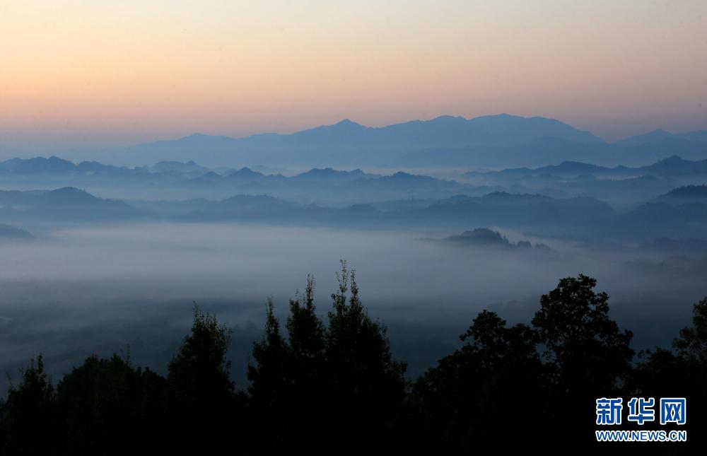 11月1日,安徽齐云山风景区出现平流雾景观.
