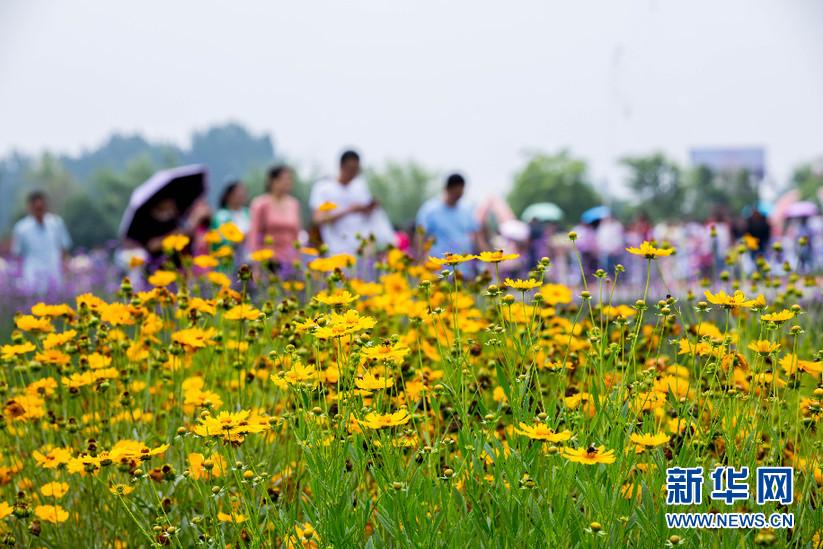 中国大运河·淮北濉溪柳孜文化园开园