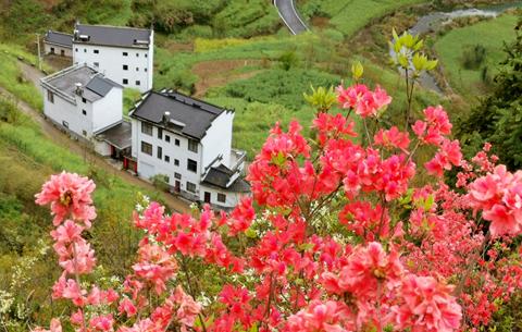 """皖南這座小鎮,被喻為""""東方小瑞士"""""""