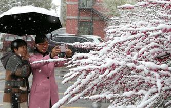 新疆遭遇寒潮天氣