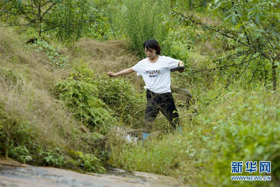 (圖片故事)(6)重慶永川:雨中逆行者 守護百姓安全的地質災害監測員