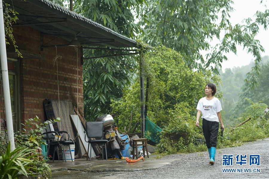 (圖片故事)(7)重慶永川:雨中逆行者 守護百姓安全的地質災害監測員