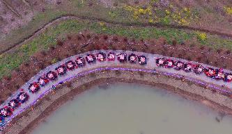 安徽滁州:桃花園裏千人宴