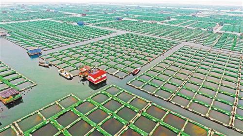 水域生态环境污染状况不容忽视 传统方式难以为继