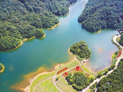 石门国家森林公园 广州日报全媒体记者杨耀烨 摄图片
