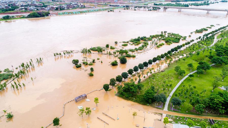 广东河源遭遇强降雨 11万人受灾已致7死1失联