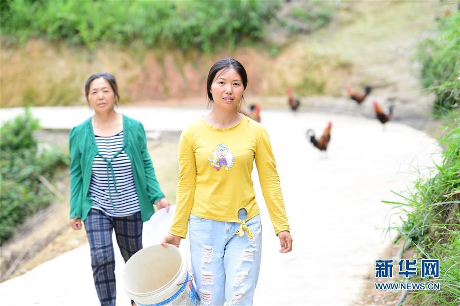"""(社會)(7)貴州天柱:大學生返鄉當""""雞倌"""""""