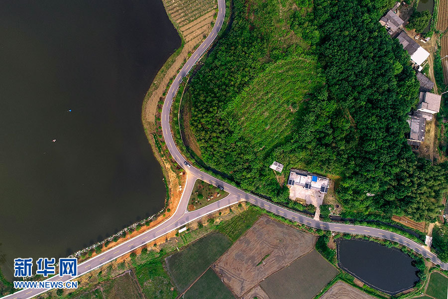 蕲春七大片区规划图