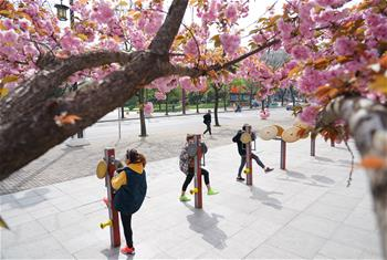 西安:春光好 健身樂