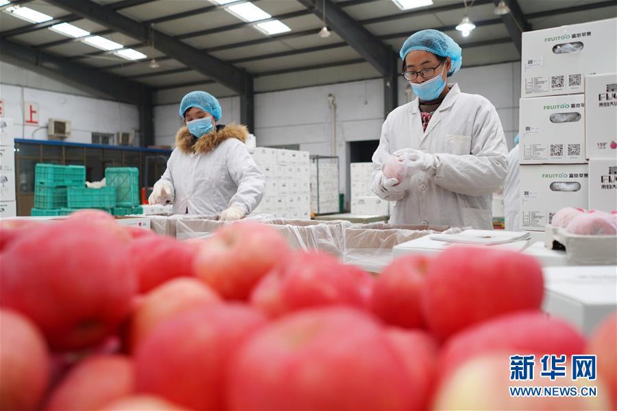 (經濟)(2)河北:扶貧企業有序復工