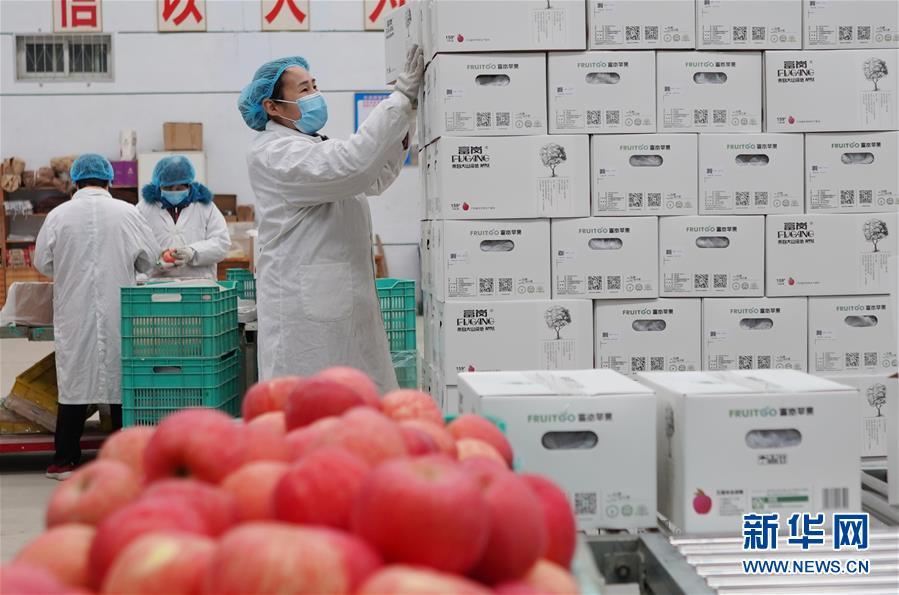 (經濟)(3)河北:扶貧企業有序復工
