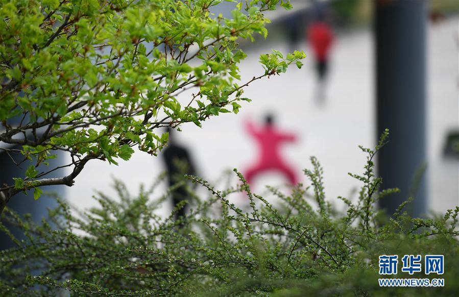 #(社會)(2)河北石家莊:晨練健身忙