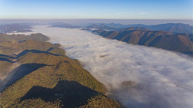 無人機帶你領略西流溪雲瀑