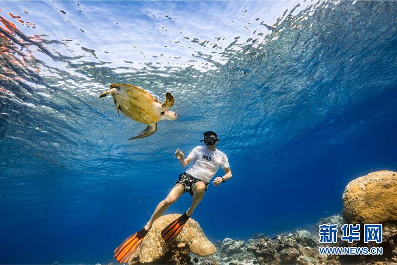 """对话""""中国水生野生动物保护通博官网形象大使""""刘烨"""