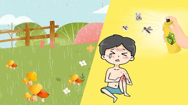 微科普丨天熱多雨,這些疾病要當心