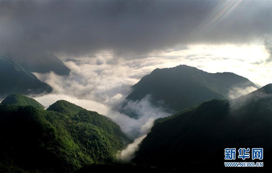 (環境)(2)陜西鎮巴:草壩雲海宛如仙境