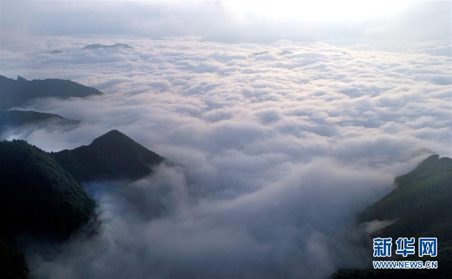 (環境)(4)陜西鎮巴:草壩雲海宛如仙境